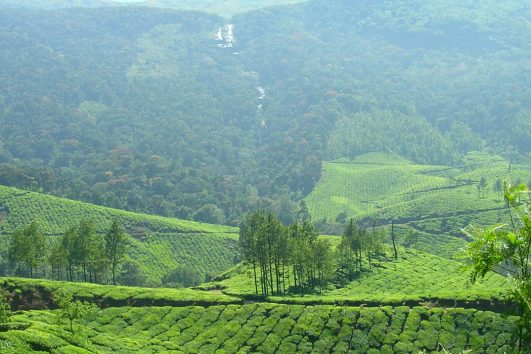 Budget Kerala Holidays